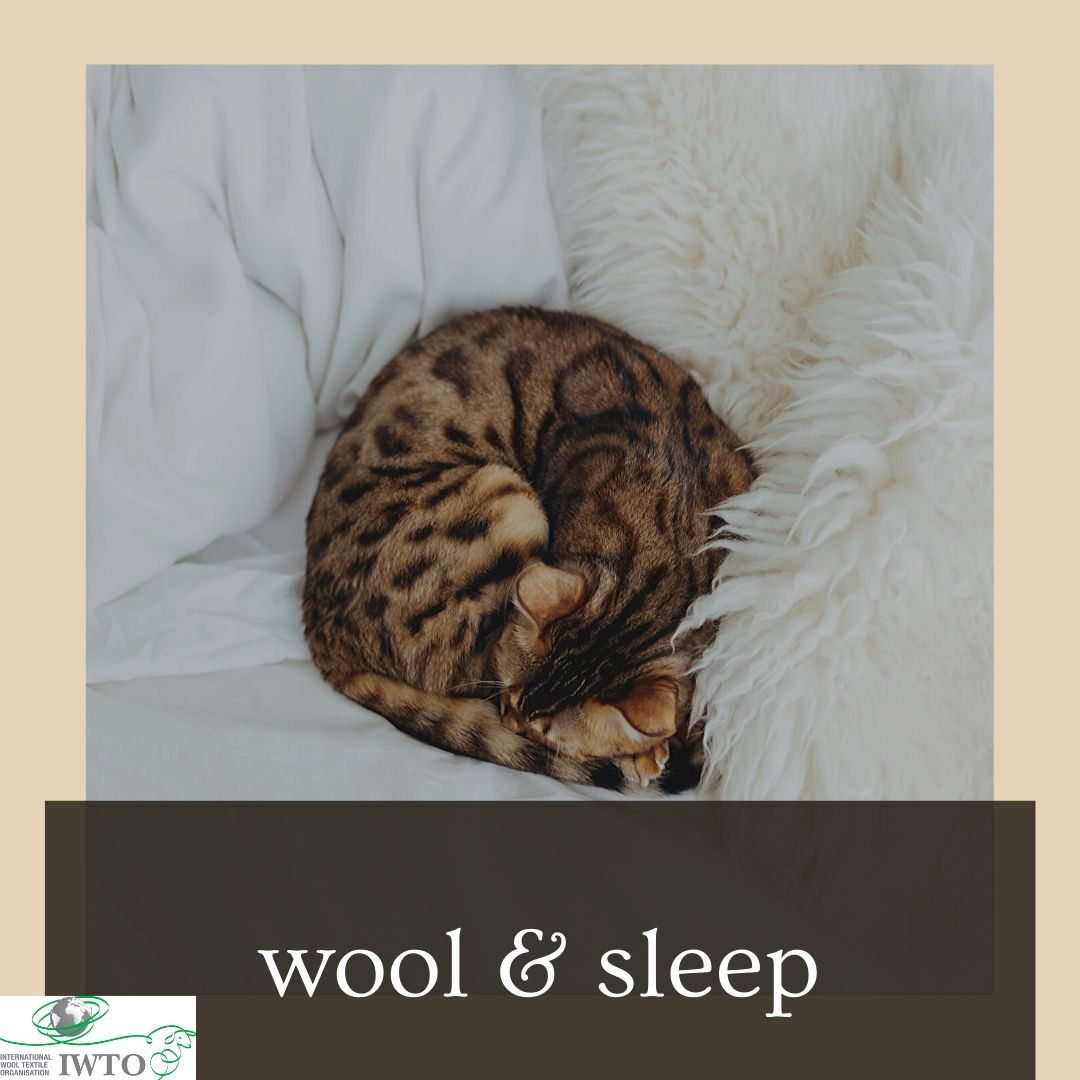 Wool & Sleep